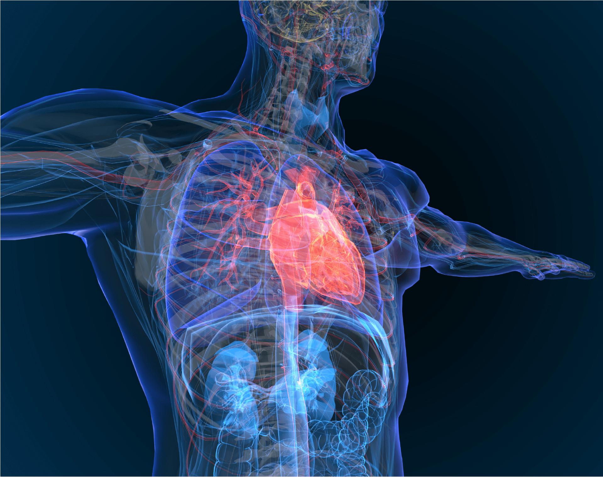 Health Management Insight: Coronary heart disease